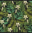 elegant hawaiian seamless pattern with exotic palm vector image