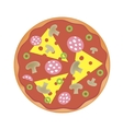 pizza with cheese salami mushrooms vector image