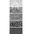 animal wildlife black and white background vector image vector image
