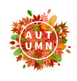 Bright banner for autumn sale