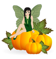 Fairy on a pumpkin vector image