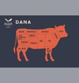 meat cuts poster butcher diagram - dana vector image vector image