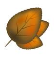 orange leaf symbol icon design vector image