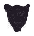 portrait of a cougar silhouette vector image vector image