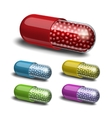Set of medical capsule with granules vector image vector image