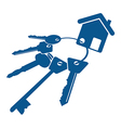 house keys bunch vector image