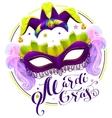 Mardi Gras lettering text Purple carnival mask vector image vector image