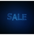 Sale Neon 3D sign vector image vector image