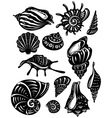 set of decorative shell vector image vector image