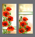 set summer banners with red poppies vector image