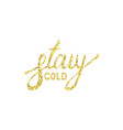 stay gold moder brush text vector image vector image