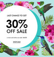 summer sale banner with tropical flowers and birds vector image vector image