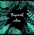 summer tropic background with palm leaves vector image vector image