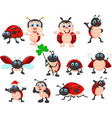 cartoon ladybug collection set vector image vector image
