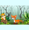 cartoon two foxes playing in the foggy forest vector image