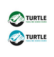 circle turtle logo design template vector image vector image