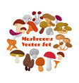 delicacies fresh edible mushrooms set vector image vector image