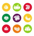 Line fruit icon set vector image