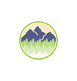 mountain and spruce landscape adventure logo vector image