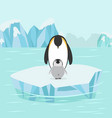 penguin and baby in north pole arctic vector image vector image