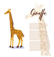 poster with origami giraffe vector image