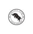 retro vintage angry rhino rhinoceros badge emblem vector image vector image