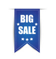 tag big sale with shadow vector image vector image
