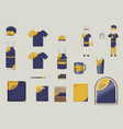 corporate and brand identity elements set vector image