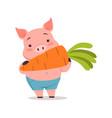 cute pig eating carrot funny cartoon animal