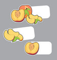 fresh peach stickers vector image vector image