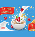 oat flakes with cranberry oatmeal advertising vector image vector image