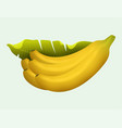 ripe yellow banana fruits realistic juicy healthy vector image vector image
