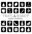Set of square icons with fruits and berries vector image