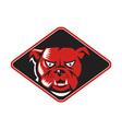 Angry Bulldog Head Front Retro vector image vector image