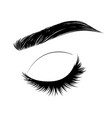 closed eye with long eyelashes and brows vector image vector image