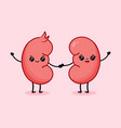 cute cartoon couple happy kidneys character vector image