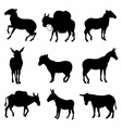 Donkeys Silhouette detailed vector image vector image