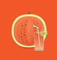 fresh and juicy red watermelon and slices vector image