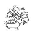 gardening bonsai icon hand drawn icon set outline vector image