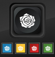 rose icon symbol Set of five colorful stylish vector image