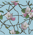 beautiful seamless pattern blooming branches vector image