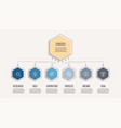 business infographic organization chart with 6 vector image vector image