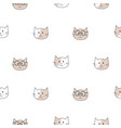 cute cats kids seamless pattern child animal pet vector image vector image
