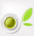 green tea Stock vector image vector image