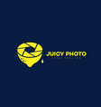 juicy photo logo vector image vector image