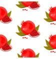 red fresh pomegranate pattern art food design vector image vector image