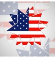 The abstract star with american flag vector image vector image