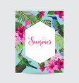 tropical summer floral poster with hummingbird vector image vector image