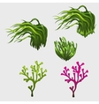 Vegetable set with grass icons for your needs vector image vector image