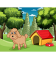 A dog standing outside his dog house vector image vector image